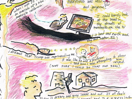 Blog 6: Attempting