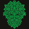 Greenman-1_edited.jpg