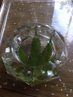 Clear with Smokey Glass