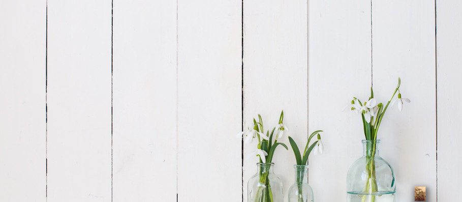 White Wood Plank Wall