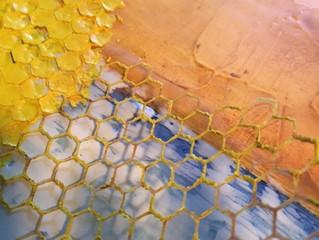 Honeycomb BIRDS'n BEES series