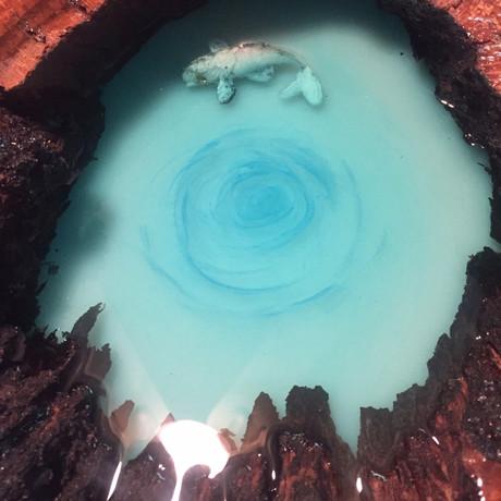 Boundary Oak Blue Hole