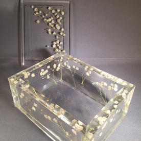 BABY BREATH Box with Lid