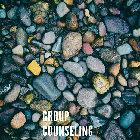 Group Counseling.png