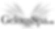 Rocket Web Labs Inc. Wix MLS IDX Integration