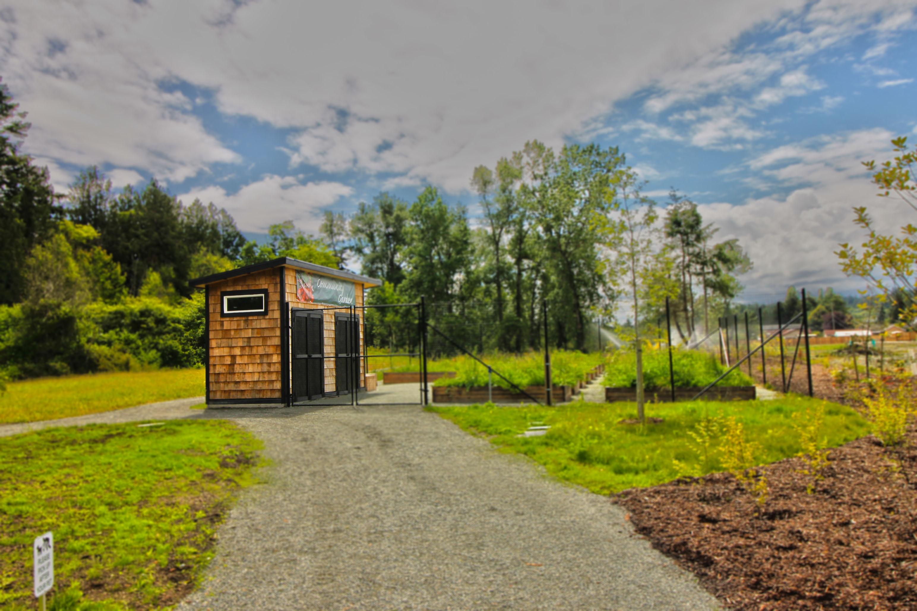 reay-creek-community-gardenjpg