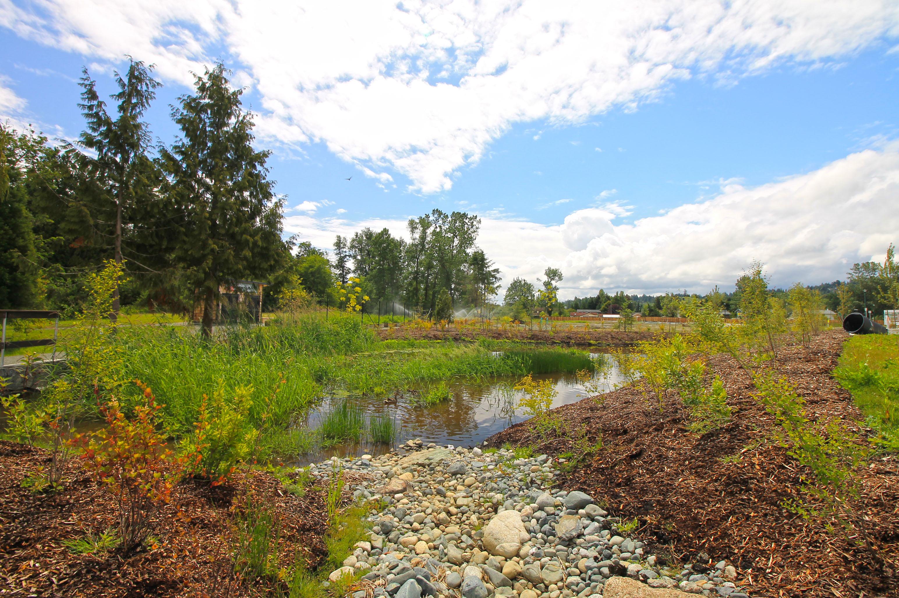 reay-creek-community-parkjpg