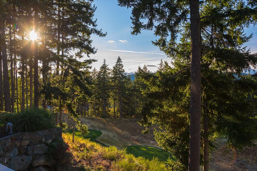 2162 Nicklaus Drive, Bear Mountain