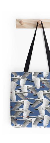 Schwäne Swans