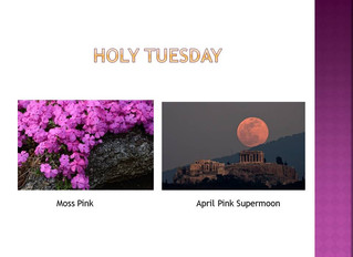 Countdown To The Cross - Holy Tuesday