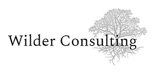 Wilder Consulting Logo_edited_edited.jpg