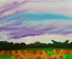 Taimer's Fields