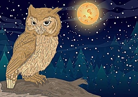 owl-with-full-moon-background-vector.jpg