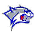 Wildcat Logo New.jpg