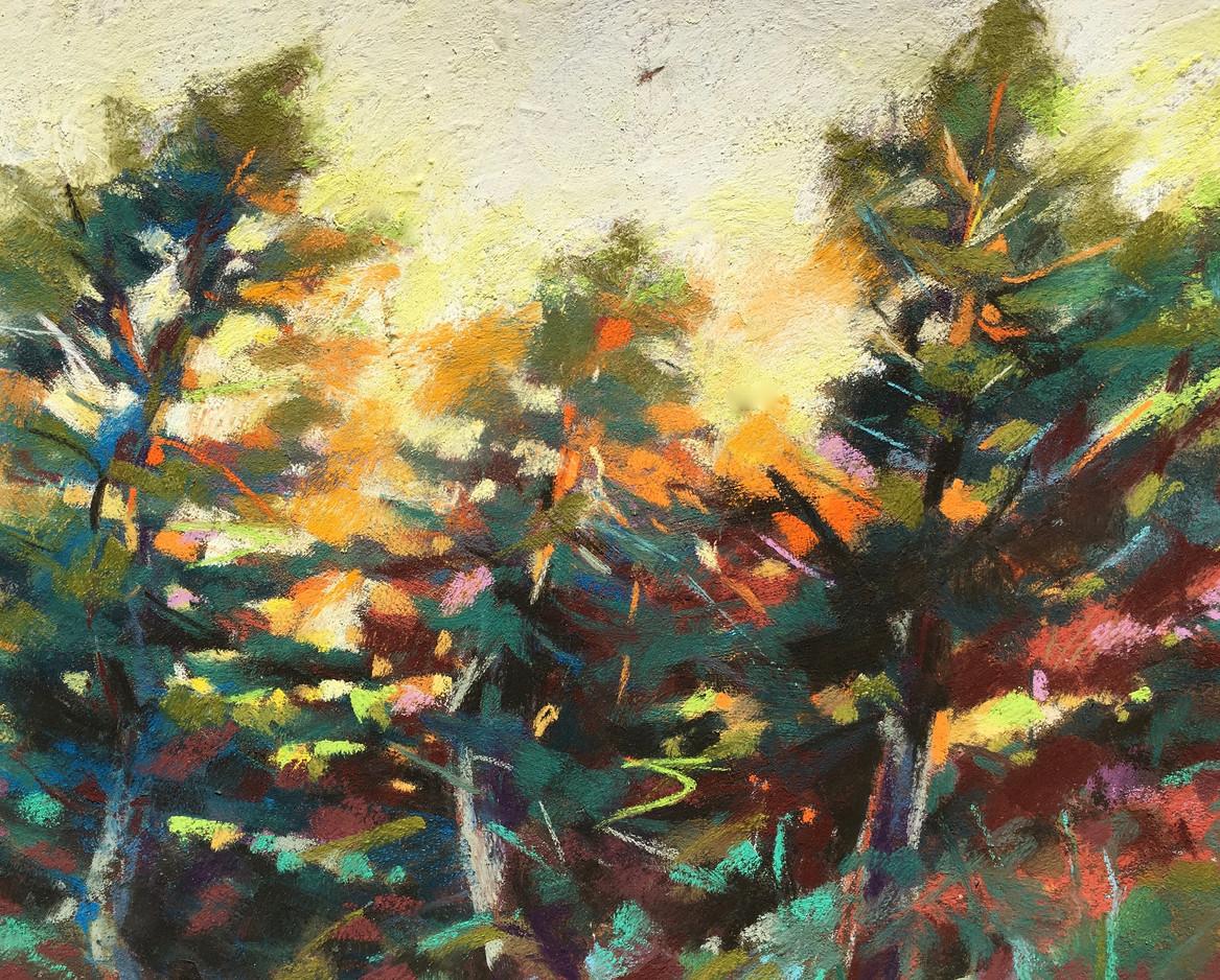 Grand Cedars