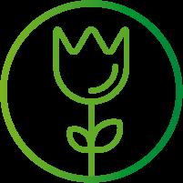 servicios-florales-1.png