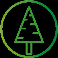 arboles-1.png