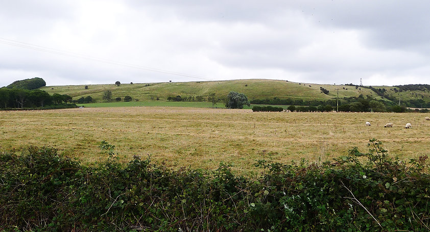 Tolsford Hill from East Sandling Camp