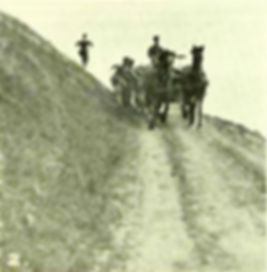 Training Horses on Tolsford Hill 1915