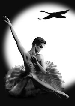 ballet sarha sitting web