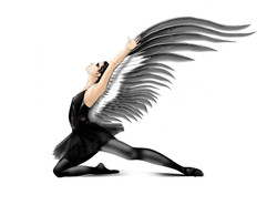 white swan wings-may 16 finpsd