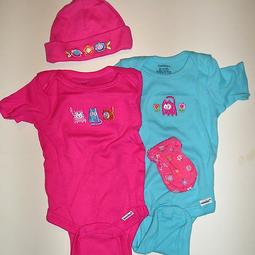 Gerber 4 pc set pink.aqua size N