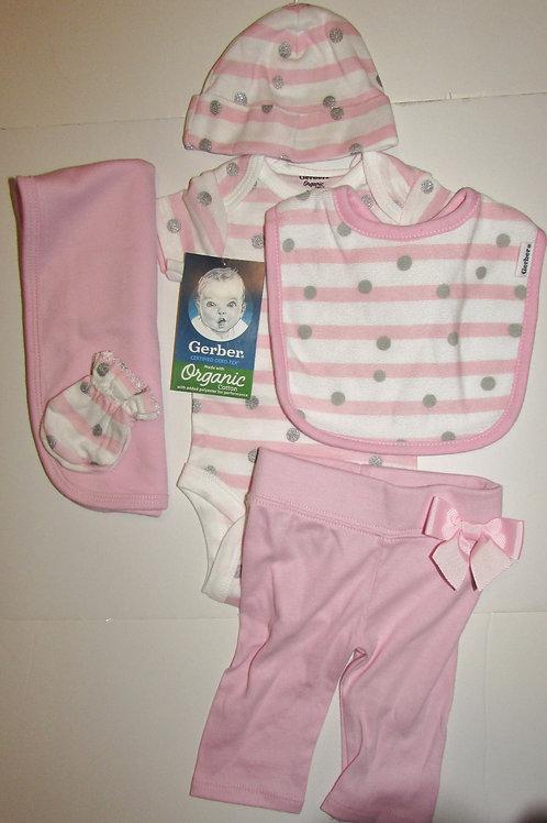 Gerber 6 pc set pink size N