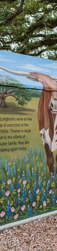 Texas Longhorn Mini Mural