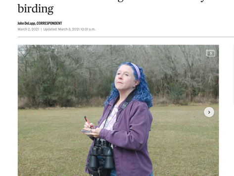 League City's Birding Guide Featured in Houston Chronicle