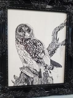 Owl October Art Gallery
