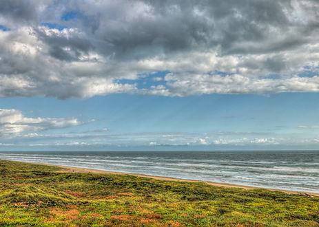 Galveston Island State Park.jpg