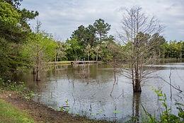 Rustic Oaks Park