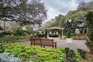 Sit back and relax in this lush garden, a popular hot spot for Houston photographers.