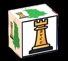 SVCC 3D Central USA Logo.PNG