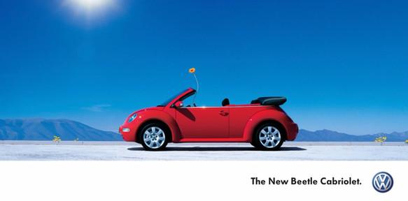 VW Beetle 'Flower'