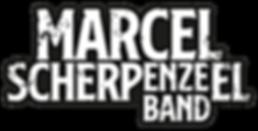 Logo-digitaal-groot MSB.png