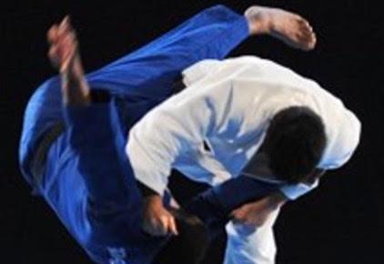 judo for MMA.jpg