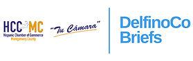 DelfinoCo Briefs_Logo-03.jpg