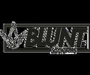 BLUNT SCOOTER TROTTINETTE.png