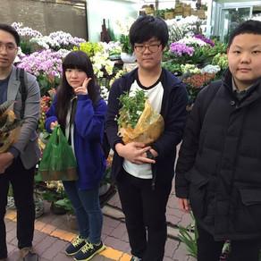 150327 양재 꽃시장