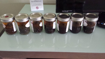 7 - 100 gram jars of Bulk Raw Oil