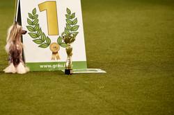 The winner is... | Dortmund
