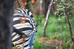 Hidden beauty   Südafrika