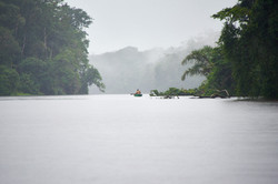 Into The Wild   Costa Rica