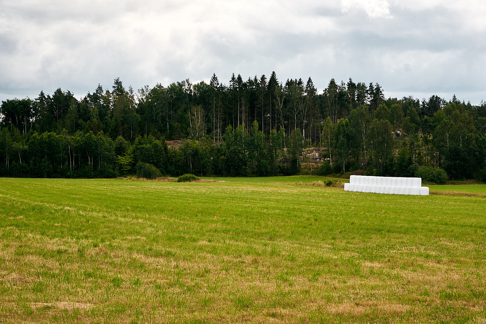 Natur aufräumen | Schweden