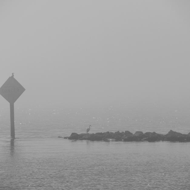 Skyway Fog - 2017