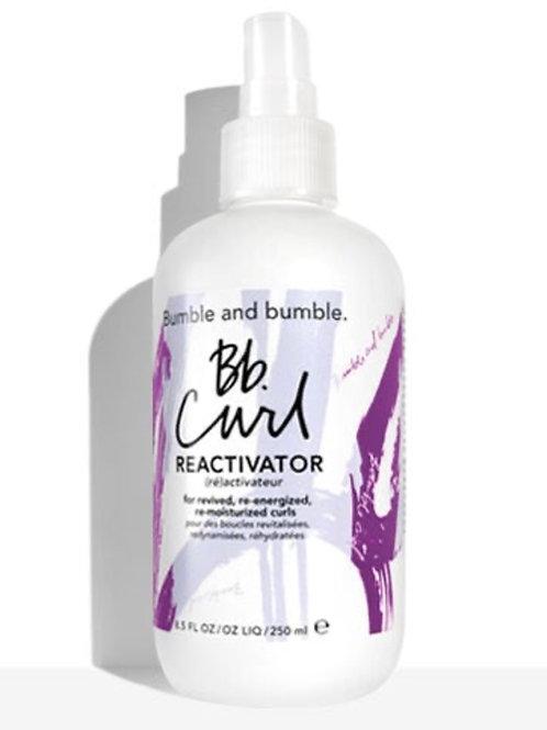 Bb Curl Reactivator