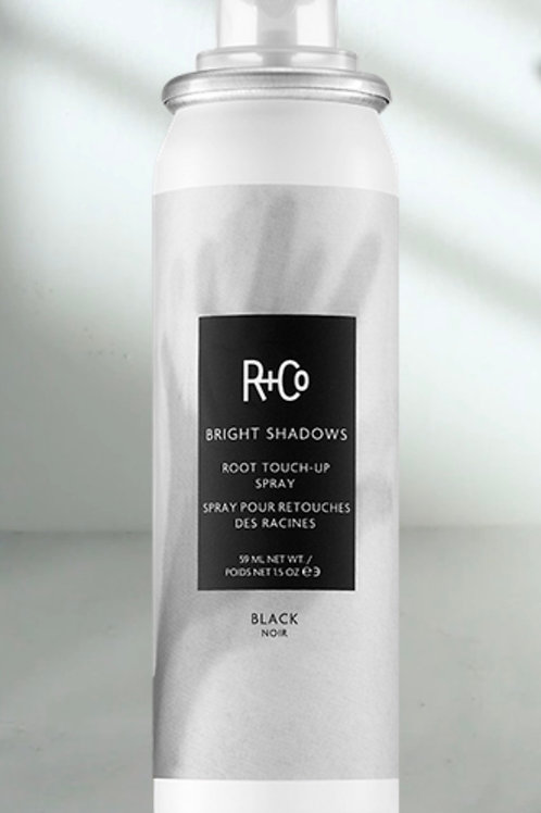 R+Co Bright Shadows Root Spray