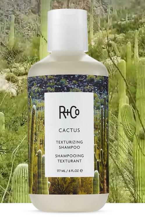 R+Co Cactus Shampoo