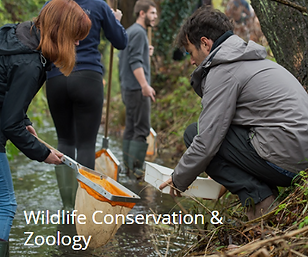 Wildlife Conservation & Zoology.PNG